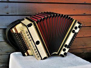 Ahorn geriegelt - Harmonika