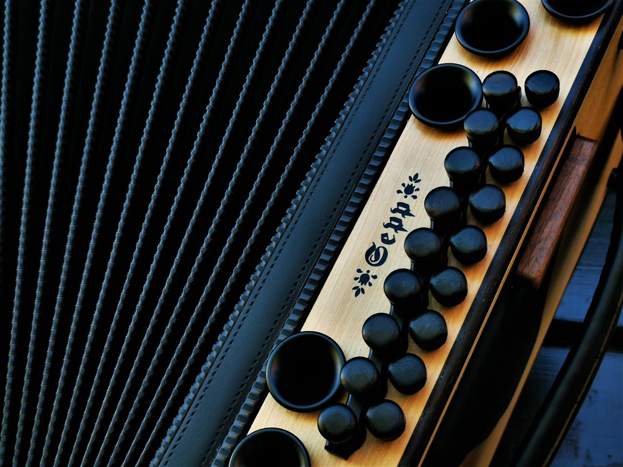 Steirische Harmonika aus Wildkirsche Bass-Detail